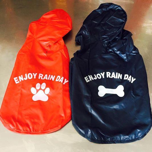 Áo mưa cho cún