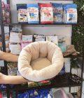 Nệm cho chó mèo – Pet Nha Trang
