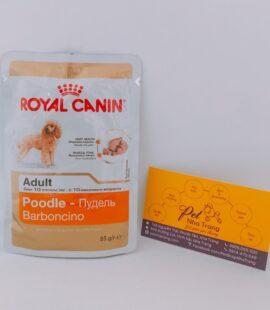 Pate Royal canin dành chó chó Poodle