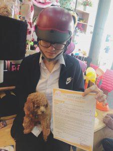 Mua bán Chó uy tín bậc nhất tại Nha Trang
