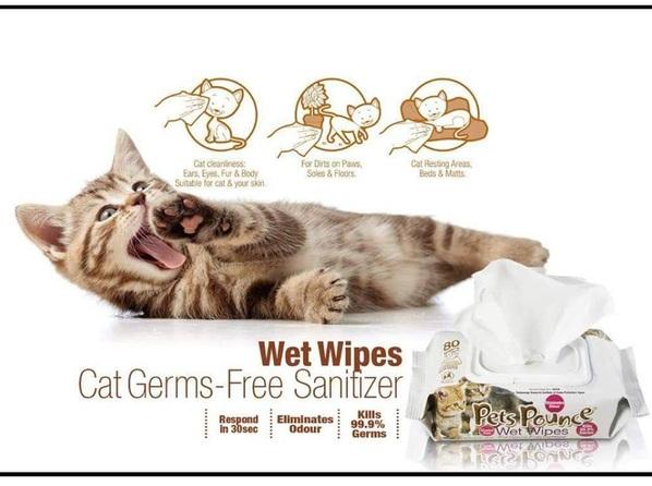 Khăn giấy ướt khử mùi Pets Pounce2