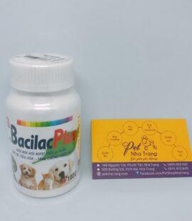 Bacilas Plus khử mùi hôi nước tiểu và phân cho chó mèo