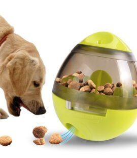 Đồ Chơi Cho Pet Eating Sport Pet Nha Trang