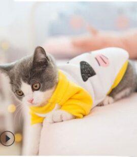Áo thu đông hình mèo chó chó, mèo Pet Nha Trang