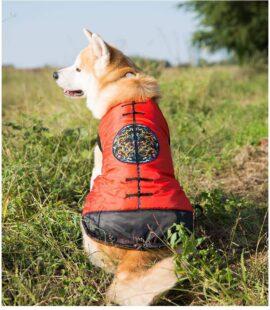 Quần áo Tết cho chó lớn Pet Nha Trang