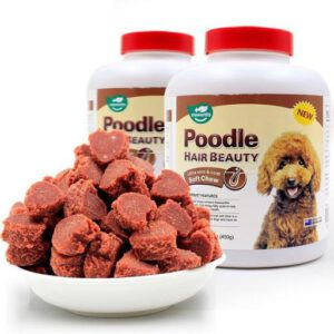 Poodle Hair Beauty Pet Nha Trang