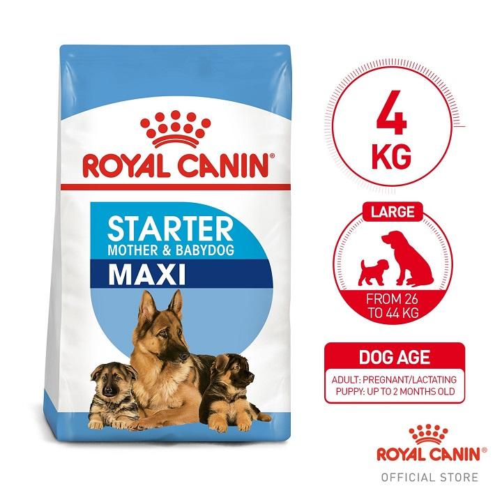 Royal Canin Maxi Starter Mother BabyDog 1kg 3
