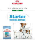 RC Mini Starter Mother BabyDog 3kg 4