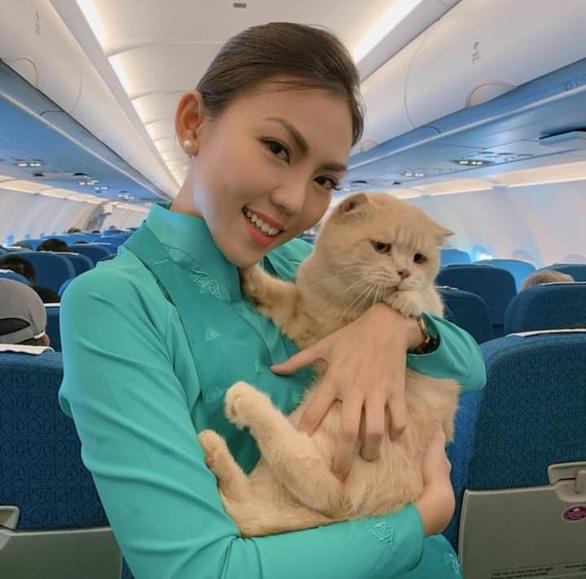đi du lịch cùng thú cưng bằng máy bay